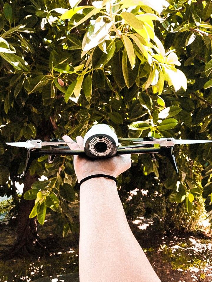 Il mio primo drone: Parrot bebop 2fpv