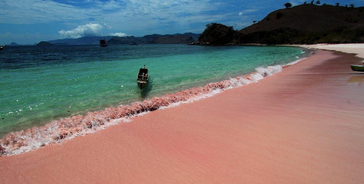 Pink-Beach-Komodo2